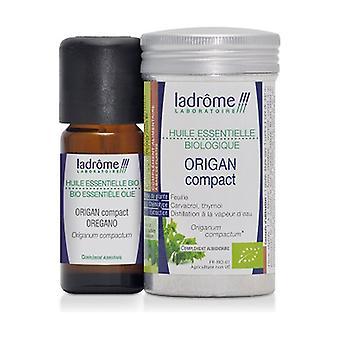 Oregano Compact Organic Essential Oil 10 ml of essential oil