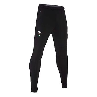 2020-2021 Wales Training Fitted Pants (Negro)