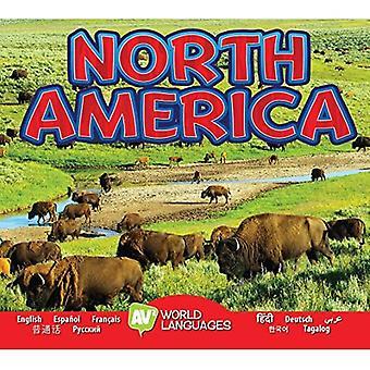 Severná Amerika