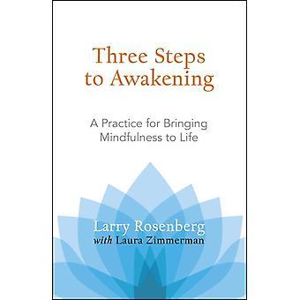 Three Steps to Awakening 9781590305164