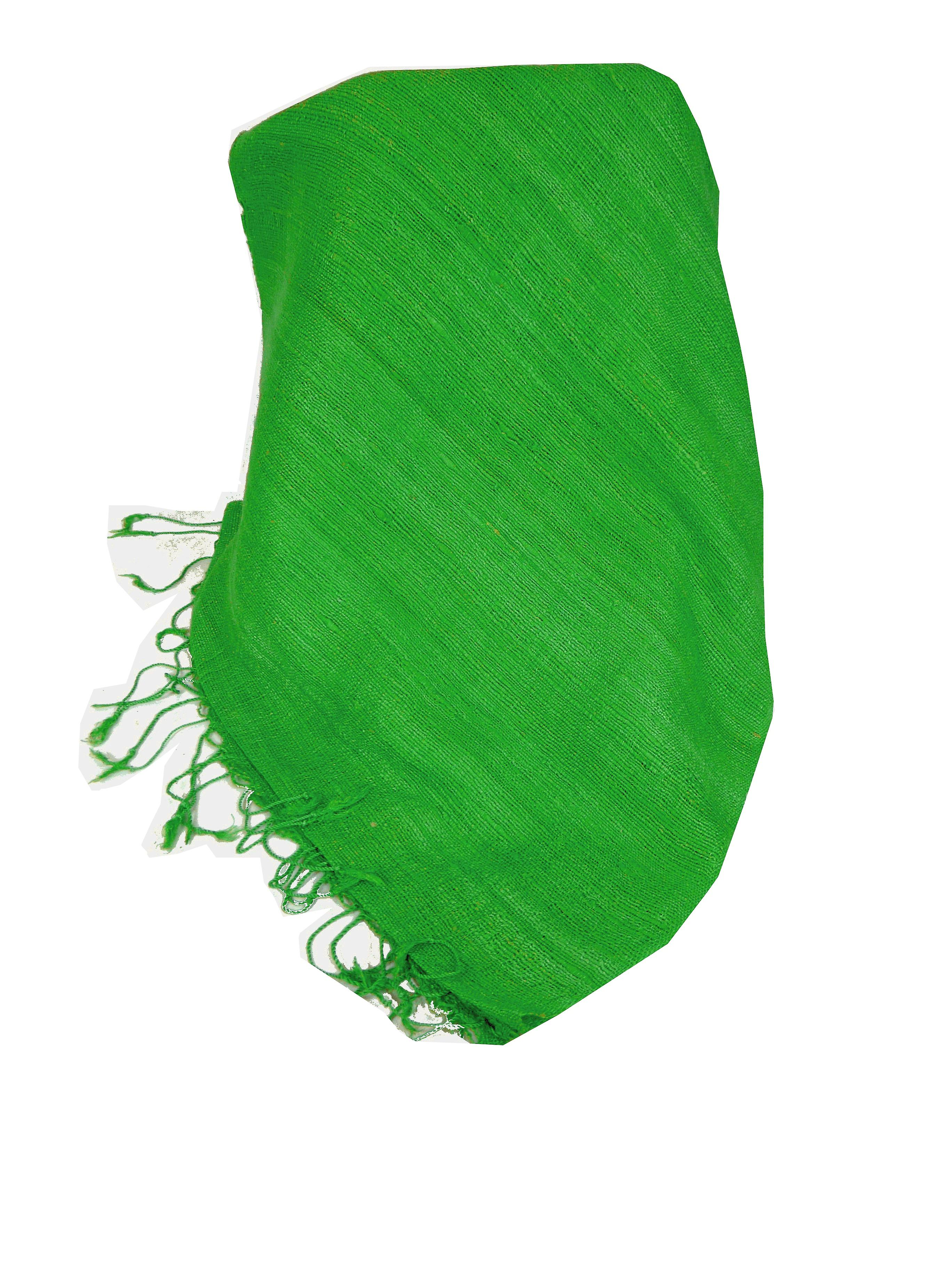 Pure Raw Silk Long Scarf Hanoi Weave Light Teal by Pashmina & Silk