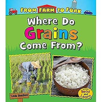 Where Do Grains Come From? (From Farm to Fork: Where Does My Food Come From?)