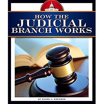 How the Judicial Branch Works (How America Works)