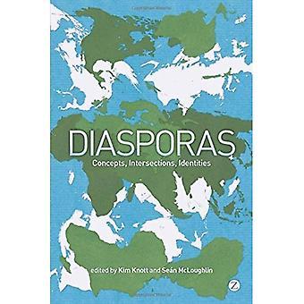 Diaspora: Konzepte, Kreuzungen, Identitäten