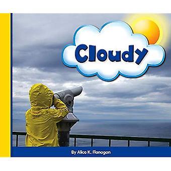 Cloudy (Eye on the Sky)