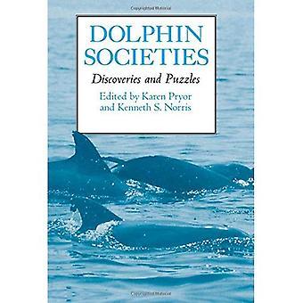 Sociedades de golfinho: Descobertas e quebra-cabeças