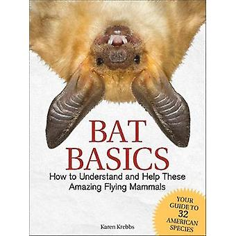 Bat Basics - How to Understand and Help These Amazing Flying Mammals b