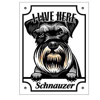 Placă metalică Schnauzer Kikande semn de câine