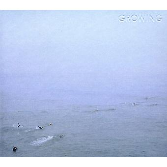 Growing - Sky's Run Into the Sea [CD] USA import