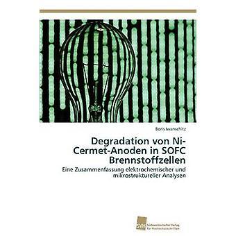 Nedbrytning Von NiCermetAnoden i Sofc Brennstoffzellen av Iwanschitz & Boris