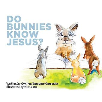 Do Bunnies Know Jesus by Cynthia Tarquino Carpenter & Illustrated by Olivia Orr