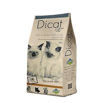 Dicat Up Kitty   (Cats , Cat Food , Dry Food)