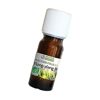 Ylang Ylang III essential oil 10 ml of essential oil