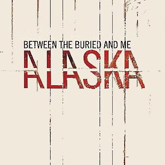 Between the Buried & Me - Alaska [CD] USA import