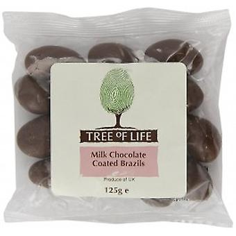 Tree Of Life - Brazil Nuts - Chocolate Coated