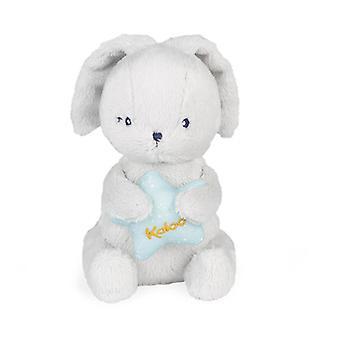 Kaloo my musical rabbit