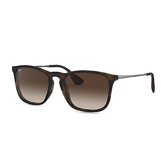 Ray-Ban - Solbriller Unisex 0RB4187F