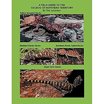 A Field Guide to the Geckos of Northern Territory