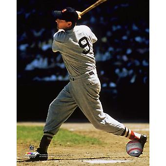 Ted Williams Action Photo Print