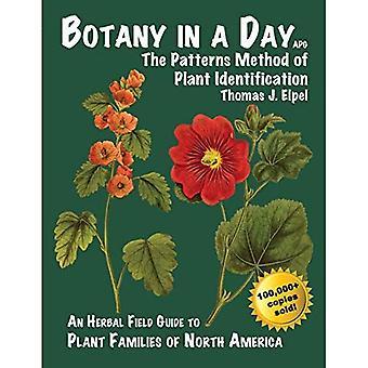 Botanik an einem Tag