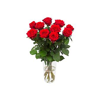Bouquet from Botanicly – beautiful red bouquet of roses, small – Height: 60 cm, 10 branches