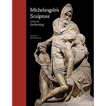 Michelangelo's Sculpture by Leo Steinberg - 9780226482576 Book