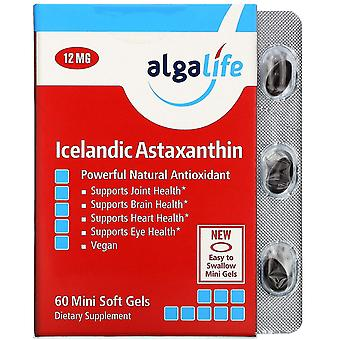 Algalife, Astaxanthin islandese, 12 mg, 60 Mini Soft Gel