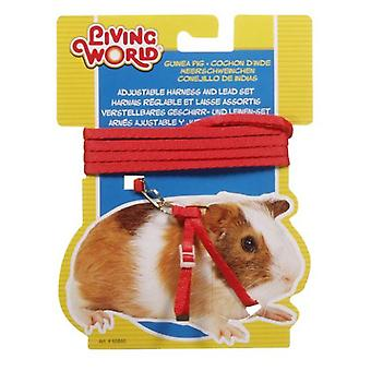 Living World L.W. HARNESS IN RED FOR GUINEA PIGS (Small pets , Leads & Harnesses)