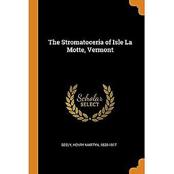 The Stromatoceria of Isle La Motte, Vermont