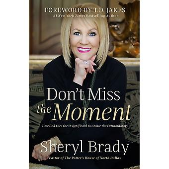 Dont Miss the Moment  How God Uses the Insignificant to Create the Extraordinary by Sheryl Brady