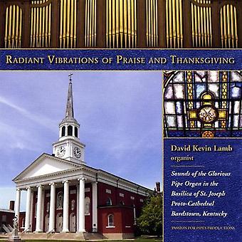 David K. Lamb - strålende vibrasjoner av lovprisning og takksigelse [DVD] USA importere