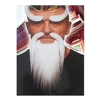 Barba e baffi barba e sopracciglia bianchi