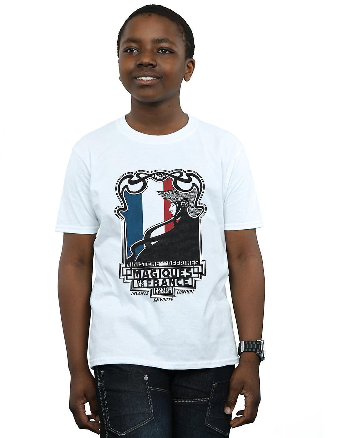 Fantastic Beasts Boys Magiques De La France T-Shirt