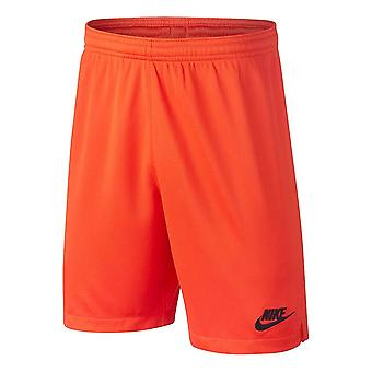 2019-2020 Tottenham Home Nike Goalkeeper Shorts (Orange) - Kids