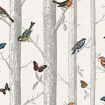 Aves de Epping em filiais wallpaper Holden
