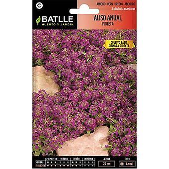 Batlle Scented Violet Alyssum (Garden , Gardening , Seeds)