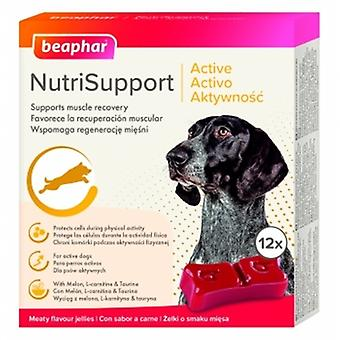Beaphar Nutrisupport Perro Activo (Dogs , Supplements)