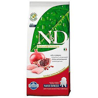 Farmina N&D Grain Free Puppy Maxi Chicken and Pomegranate (Dogs , Dog Food , Dry Food)