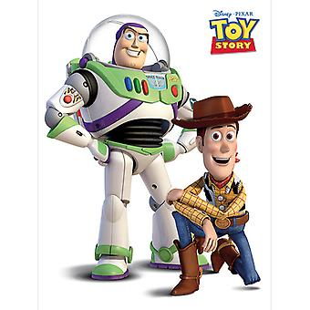 Lelutarina Buzz ja Woody Canvas Plate 30 * 40cm