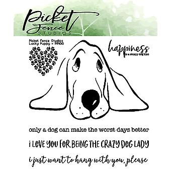 Picket Fence Studios Lucky Puppy Clear Stempels