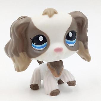 Animal Pet Shop, Régi eredeti ábra gyűjtemény