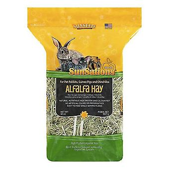 Sunseed SunSations Natural Alfalfa Hay - 32 oz