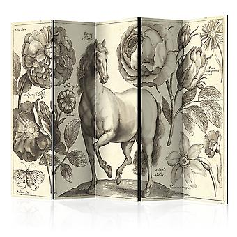 5-teiliges Paravent - Horse II [Room Dividers]