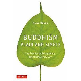 Buddhismus-schlicht und einfach - die Praxis des Gewahrseins - gerade jetzt-
