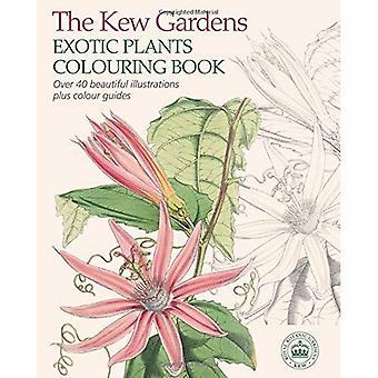 Kew Gardens eksotiske planter farging boken