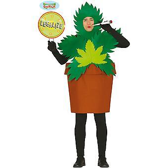 Homens fantasiam fantasia de planta de maconha