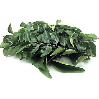 Curry Leaf-( 5lb )