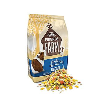 Supreme Gerty Guinea Pig Food