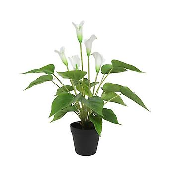 Artificial Flowering White Peace Lily Calla Lily Plant 50 Cm