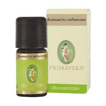Rosemary Verbenone Essential Oil None